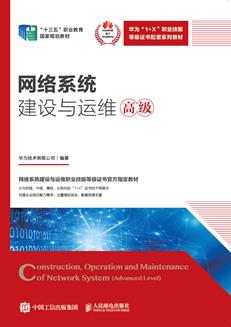 网络系统建设与运维(高级)